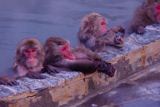 日本は温泉大国。温泉を楽しむためのマナーについて