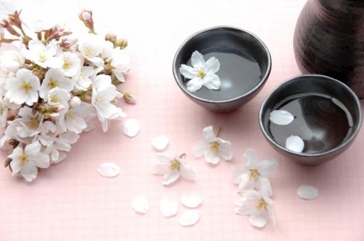花見は日本の伝統行事。その由来を知っていますか?